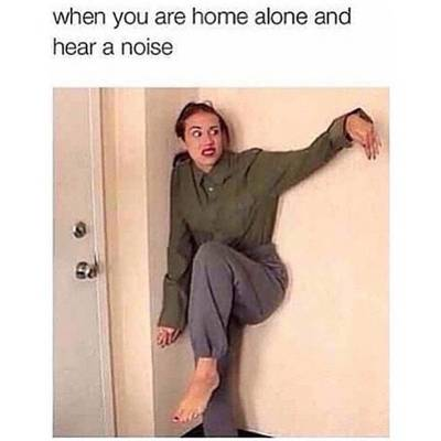 Funny Memes : When you are home alone | Fun Things To Do ...
