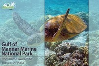 Gulf of ​Mannar Marine National Park​