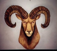 Aries, the Ram (Astrological Sign)