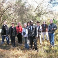 Birding Soutpansberg and Venda Tours