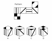Spatial Reasoning Ability Tests
