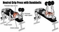 Neutral-Grip Dumbbell Bench Press