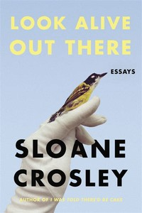Look Alive ​Out There: Essays​