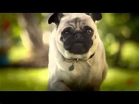 """Pug Attack"" (Doritos, 2011)"