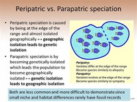 Peripatric Speciation