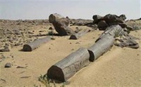 Maadi Petrified Forest,