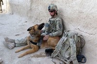 Dogs in ​Warfare​