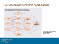Ischaemic Heart Disease (7