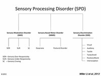 Summary of Sensory Processing Disorder Subtypes