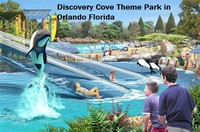 Discovery ​Cove​