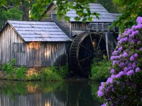 Old Water Mill,