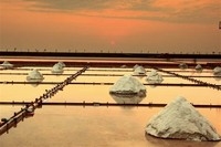 Jingzaijiao Tile-Paved Salt Fields