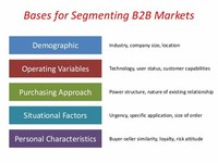 Customer Segmentation: Demographic B2B