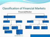 Capital Markets Which Consist of:
