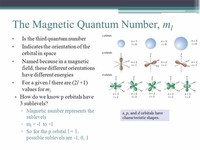 The Magnetic Quantum Number (\(m_l\))