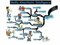 Kinaesthetic Intelligence
