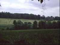 Frith Wood