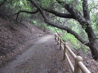 Sycamore Canyon Park Trail
