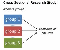 Cross-Sectional Research