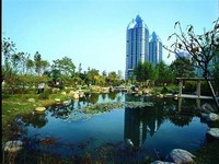 Zhengdong New District Wetland Park
