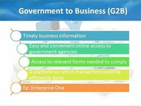 Government - to - Business (G2B)