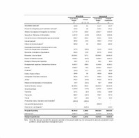 Capital Expenditure Budget, and