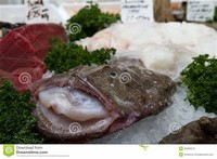 Monkfish in a Market