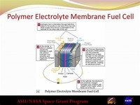 Polymer Electrolyte Membrane Fuel Cells