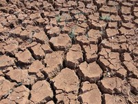 Soil Moisture Levels Also Contribute to Drought