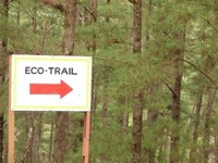 Camp John Hay Eco-Trail