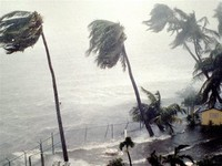 Hurricane or Cyclone: Strong Wind, Heavy Rain