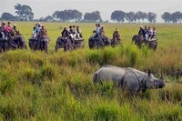 Kaziranga ​National Park​