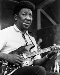 Muddy Waters​