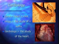 Cardiology, the Study of the Heart