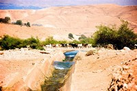 Jordan River Peace Labyrith,