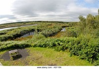 Risley Moss Country Park