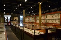 Museum of Comparative Zoology