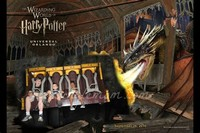 Harry Potter ​and the Forbidden Journey​
