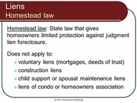 Judgment Liens, Child Support, and Alimony Liens