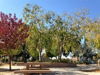 Cupertino Memorial Park