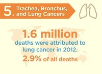 Trachea, Bronchus, and Lung Cancers