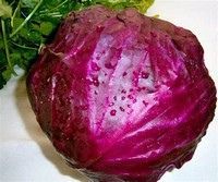 Red Cabbage​