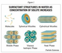 Structure of Surfactant Phases in Water