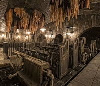 Harry Potter ​and the Escape From Gringotts​