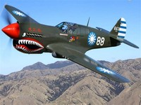 Curtiss P-40 ​Warhawk​
