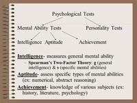 Intelligence or General Mental Ability Tests
