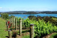 Waiheke Island Wine Tours Ltd.,