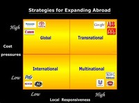 Growth Strategies of Transnational and Multinational Companies