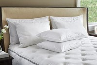 Marriott Usually Provides the Marriott Feather & Down Pillow