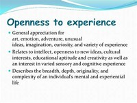 Openness: Appreciation for a Variety of Experiences